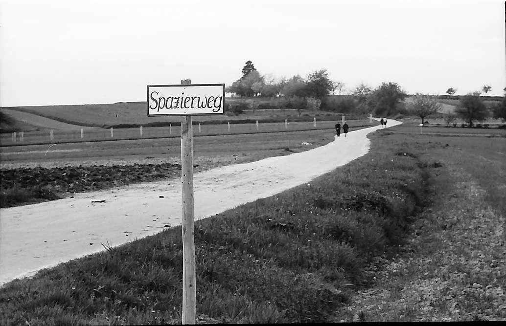 Freiburg i. Br.: Tafel mit Spazierweg am Lehener Berg in Lehen, Bild 1