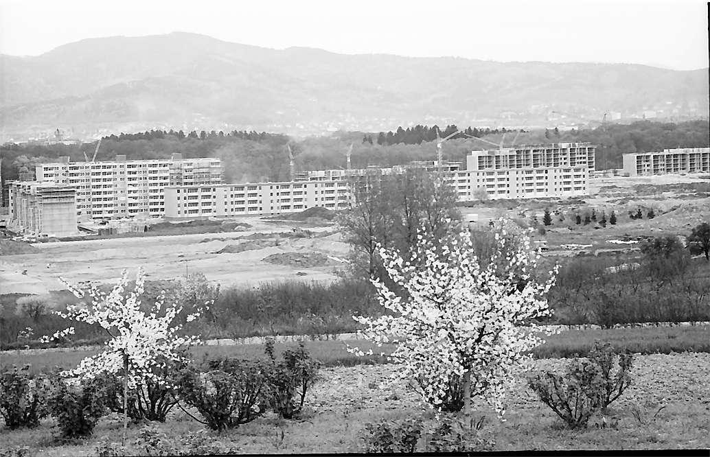 Freiburg i. Br.: Siedlung Landwassermatten vom Lehener Berg, Bild 1