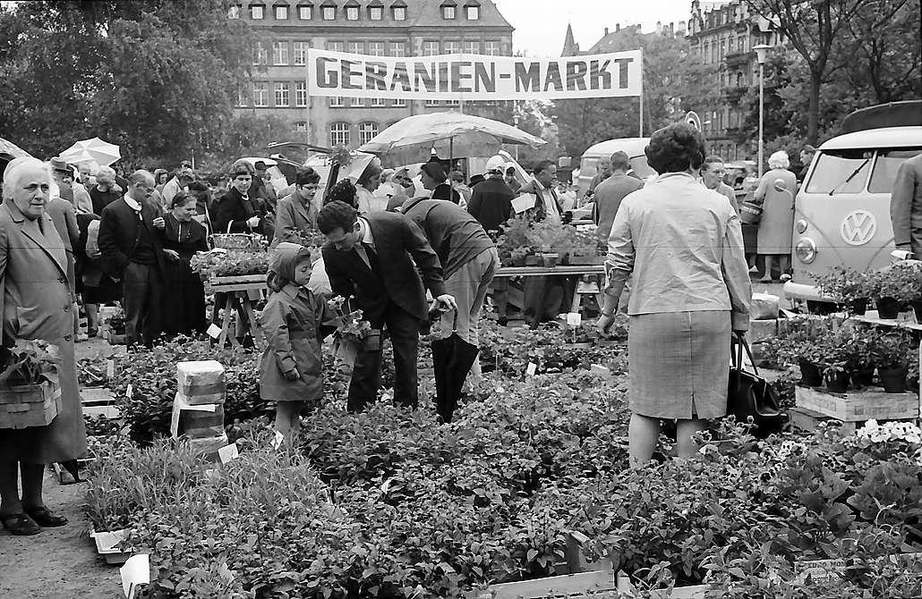 Freiburg i. Br.: Geranienmarkt am Stühlinger Kirchplatz, Bild 1