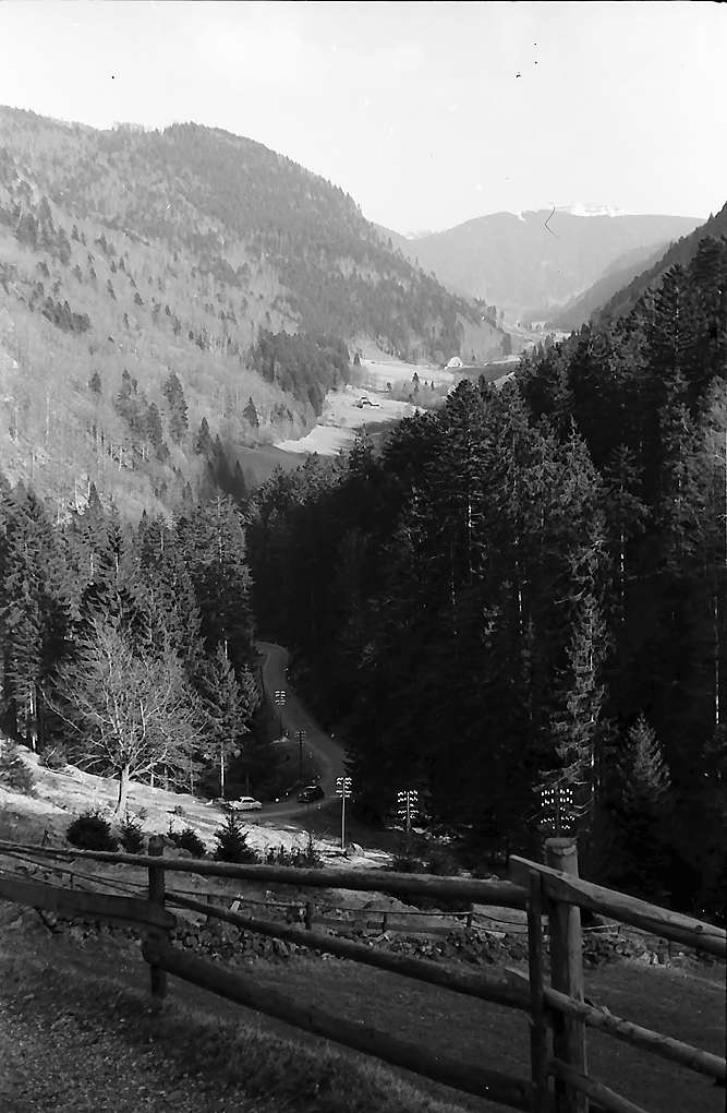 Blick in das Wilhelmertal am Fuße des Feldbergs, Bild 1