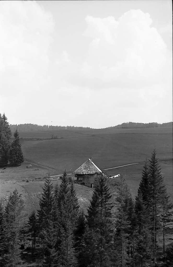 Schwarzwaldhaus und Wolkenhimmel bei Hinterzarten, Bild 1