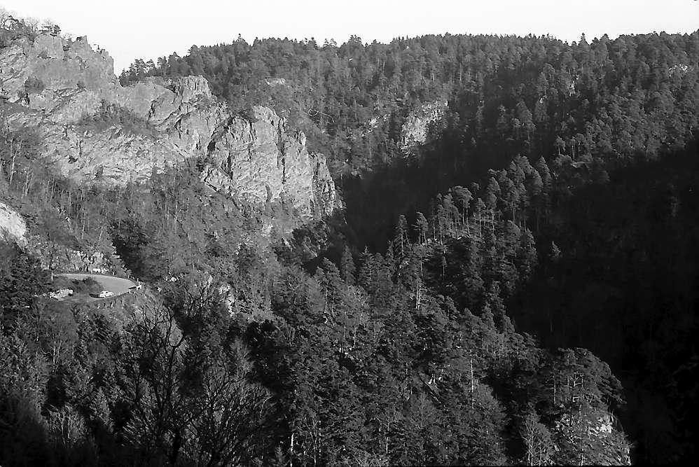 Bei Wittnau, Bild 1