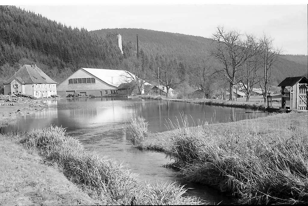 Weiher mit Sägewerk in Hammereisenbach, Bild 1