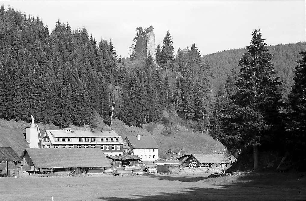 Sägewerk und Ruine Neu-Fürstenberg in Hammereisenbach, Bild 1