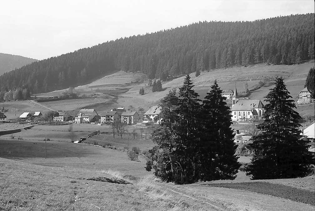Blick von der Höhe auf den Ort Hammereisenbach, Bild 1
