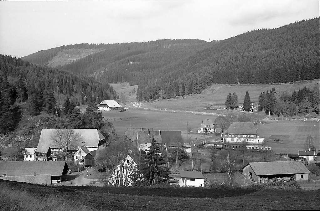 Bregtal mit Ruine Neu-Füstenberg bei Hammereisenbach, Bild 1