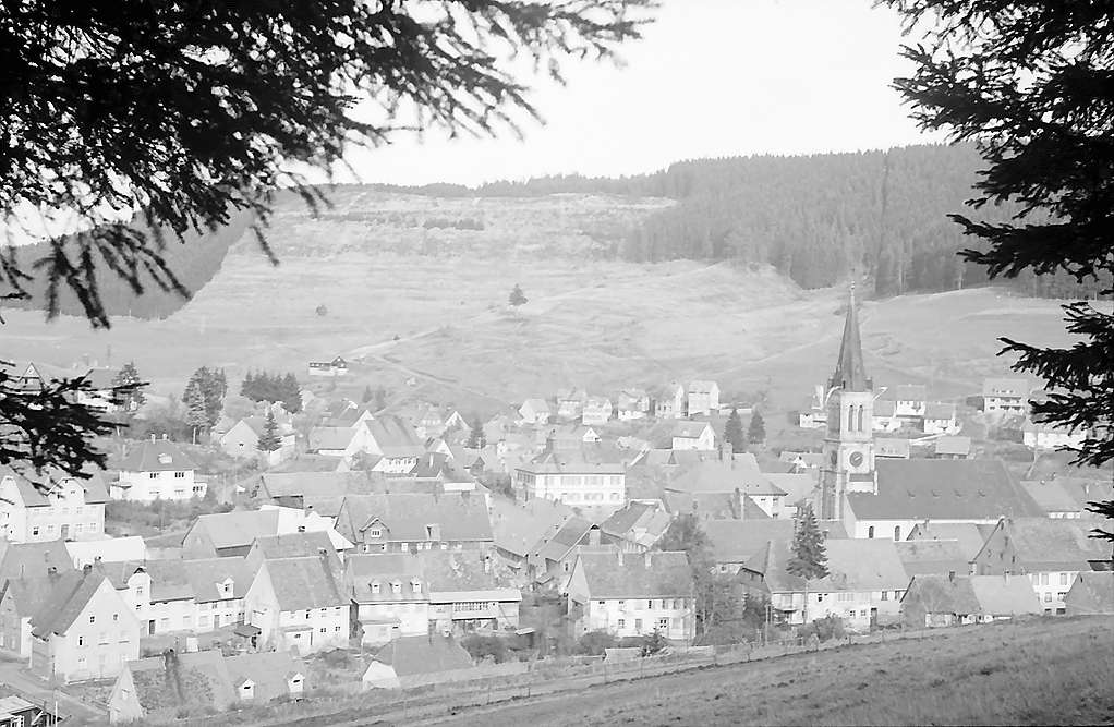 Blick aus dem Wald auf den Ort Vöhrenbach, Bild 1