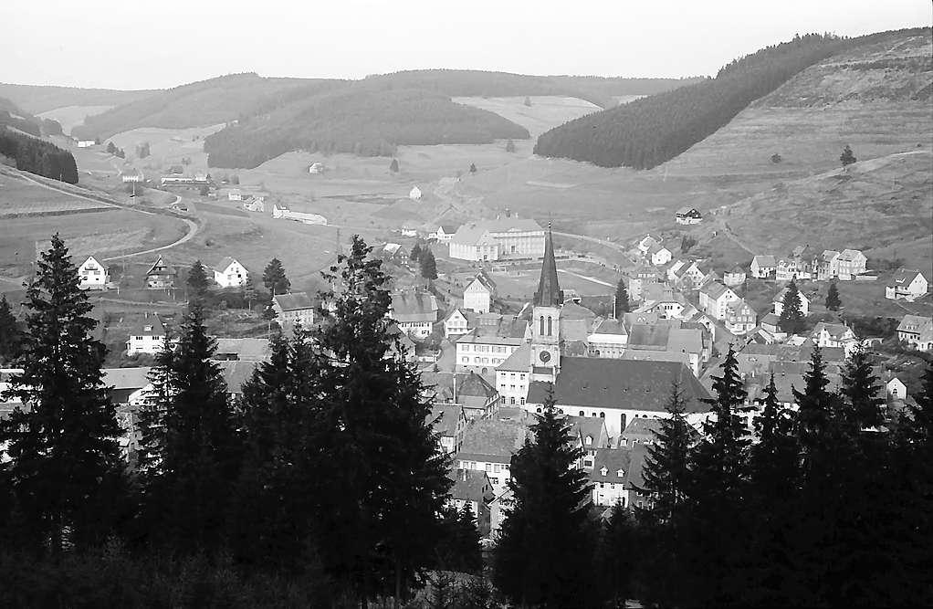Blick von der Höhe auf den Ort Vöhrenbach, Bild 1
