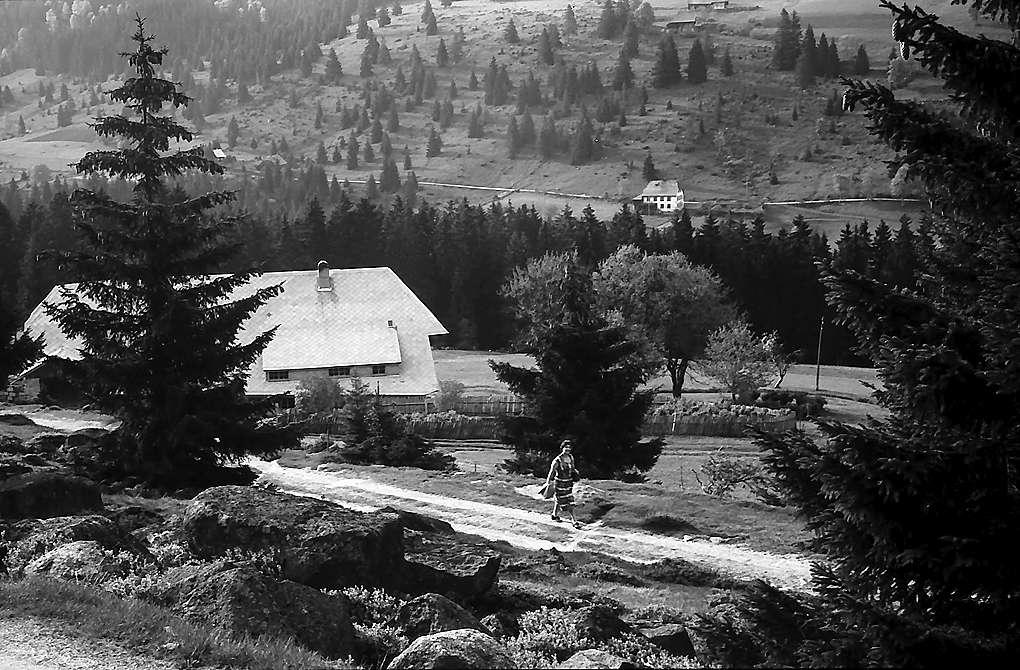 Schwarzwaldhof in Blasiwald, Bild 1