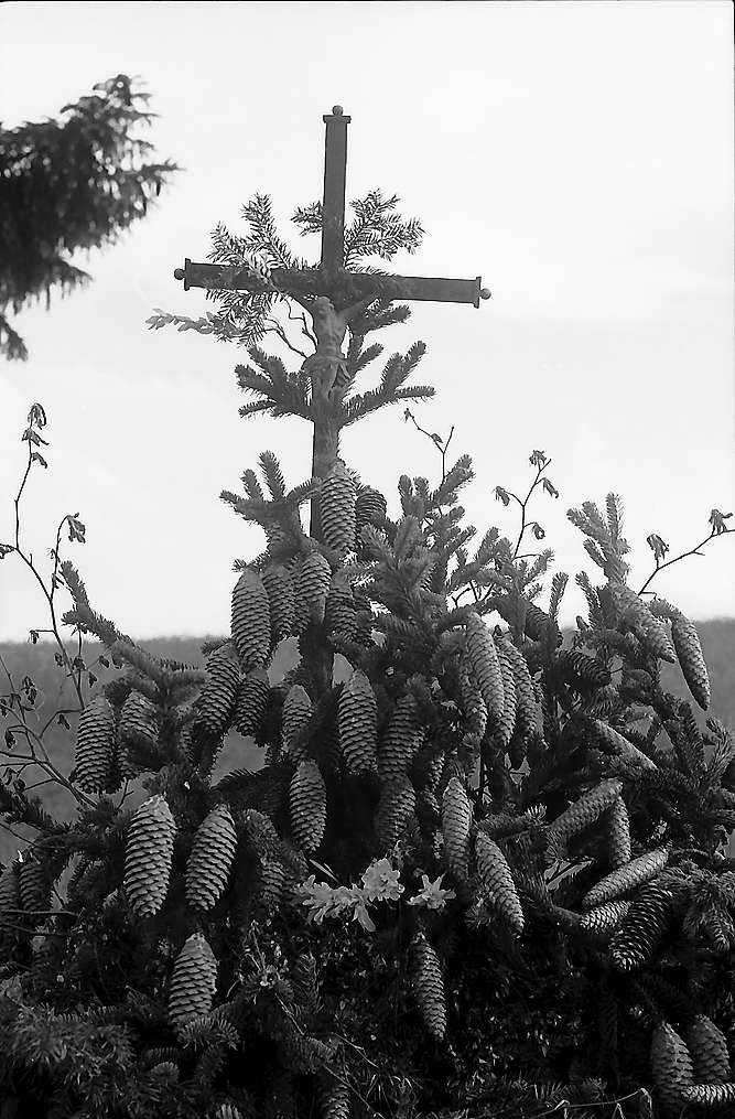 Kleines Marterl mit Tannenzapfen in Blasiwald, Bild 1