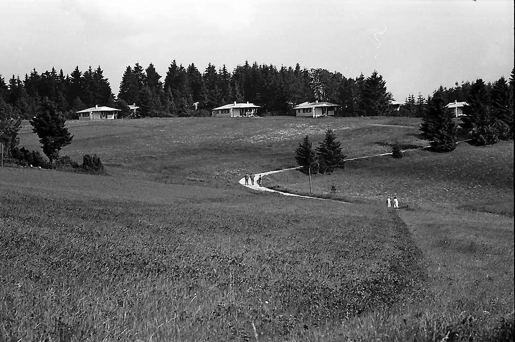 Ferienhäuser in Grafenhausen, Bild 1