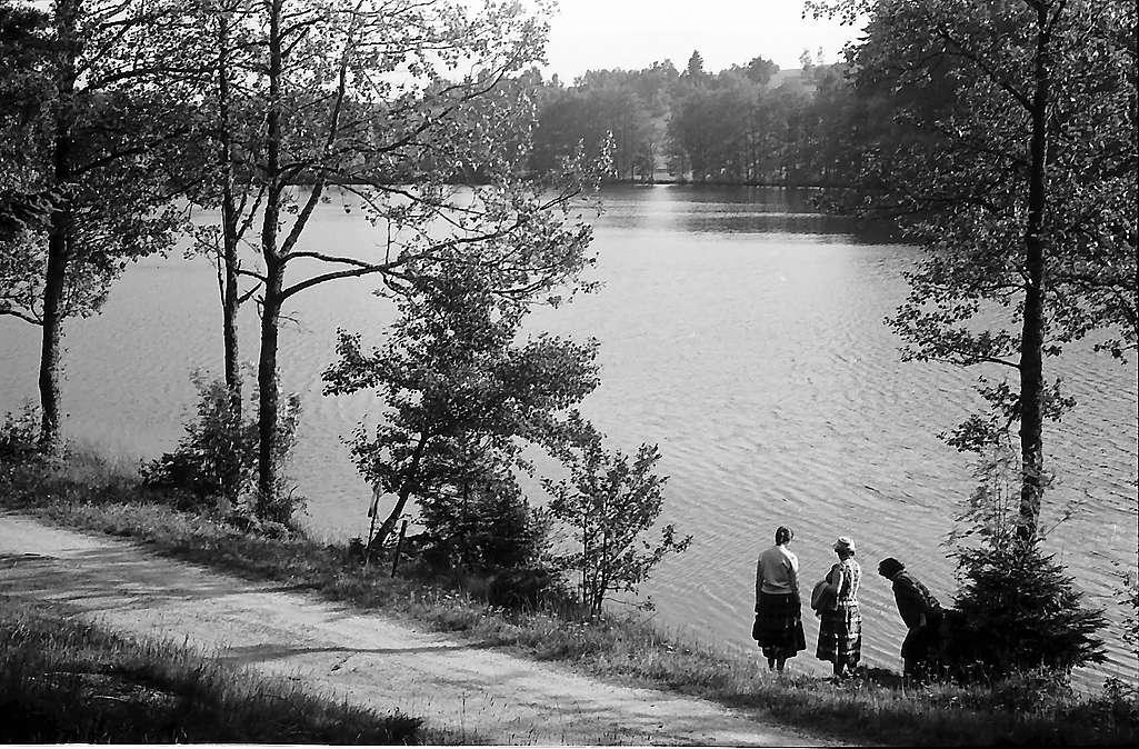 Schlüchtsee bei Grafenhausen, Bild 1