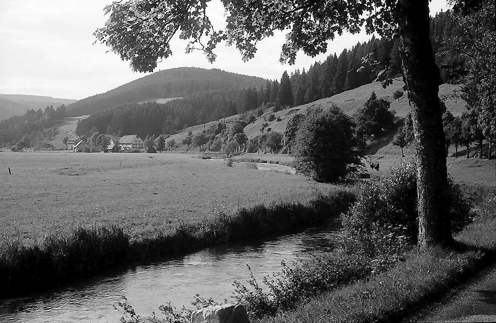 Bergtal unterhalb Hammereisenbach, Bild 1