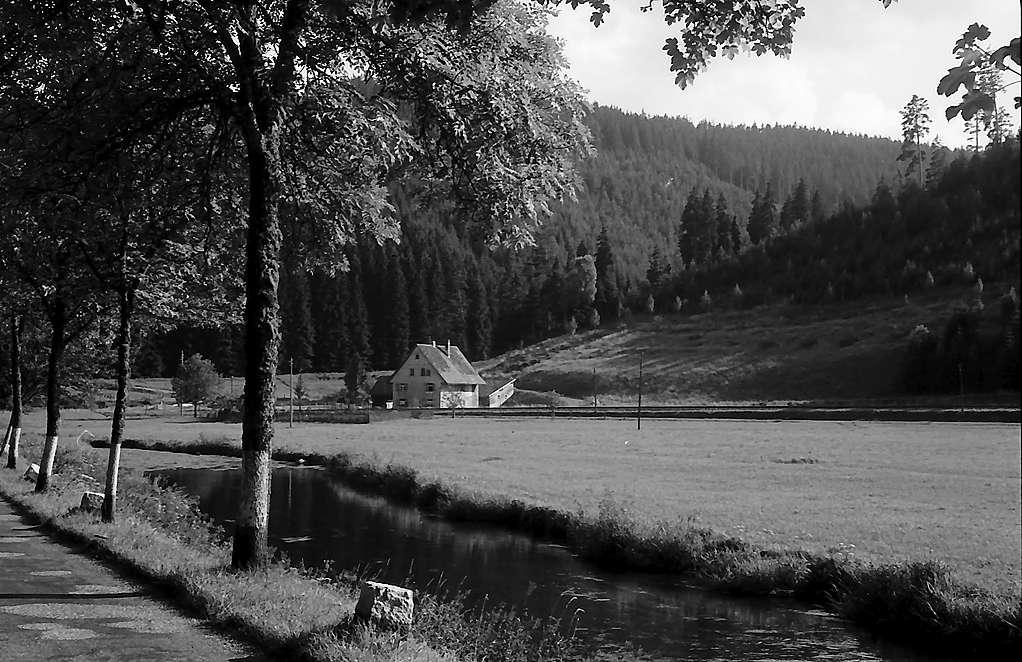 Einsames Häusle im Bergtal unterhalb Hammereisenbach, Bild 1