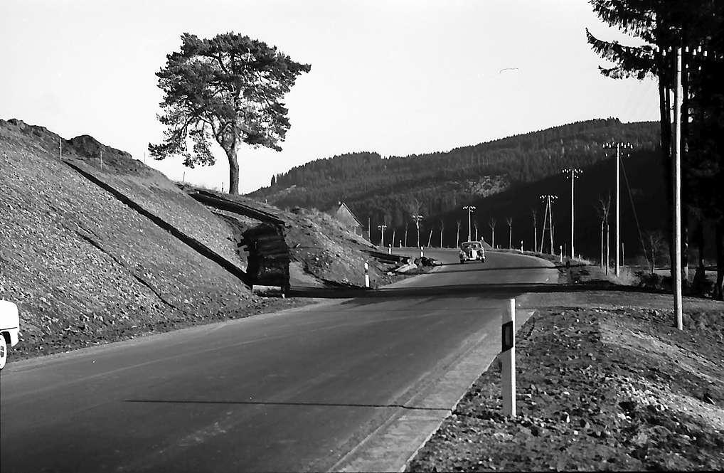 Neue Straße und einzelne Föhre bei Vöhrenbach, Bild 1