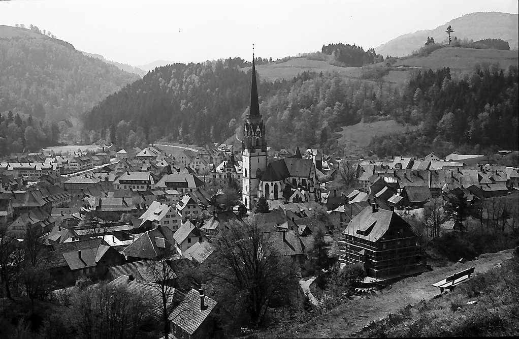 Blick vom Schlageterplatz auf Schönau, Bild 1