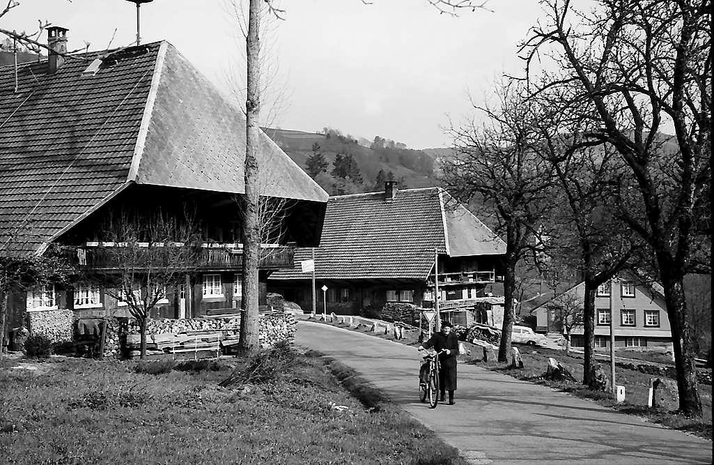 Zwei Schwarzwaldhäuser an der Straße nach Wembach, Bild 1