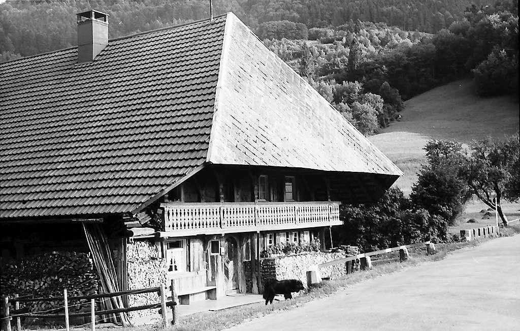 Altes Schwarzwaldhaus der B 317 bei Geschwend, Bild 1