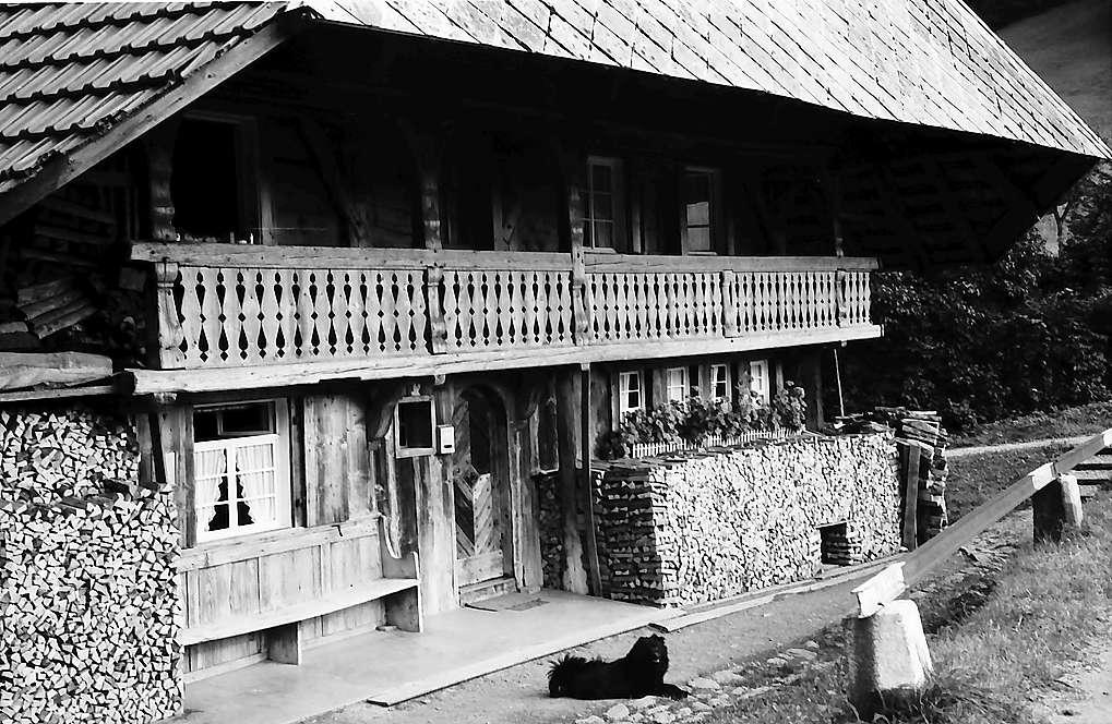Details vom Balkon und Holzstapel des alten Schwarzwaldhauses bei Geschwend, Bild 1