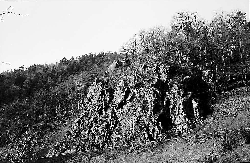 Burgruine Falkenstein im Höllental, Bild 1