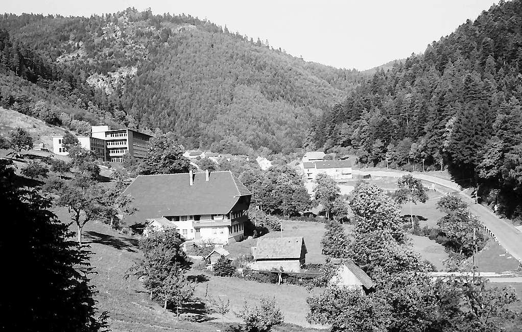 Blick von der Jugendherberge in Hornberg ins Tal, Bild 1