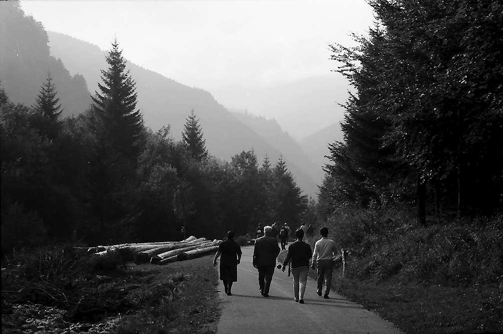 Wanderer auf der Wilhelmertalstraße, Bild 1