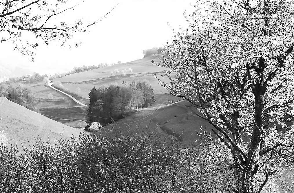 Blick von Fröhnd auf die Hohe Möhr, Bild 1