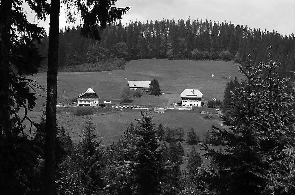 Rinkenhäuser vom gegenüberliegenden Wald, Bild 1