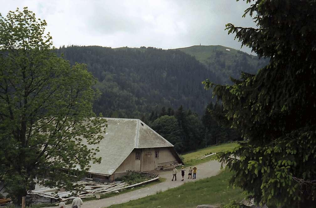 Auffahrt zum Raimartihof beim Feldberg, Bild 1