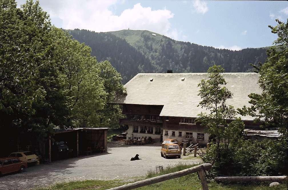 Raimartihof mit dem Feldberg im Hintergrund, Bild 1