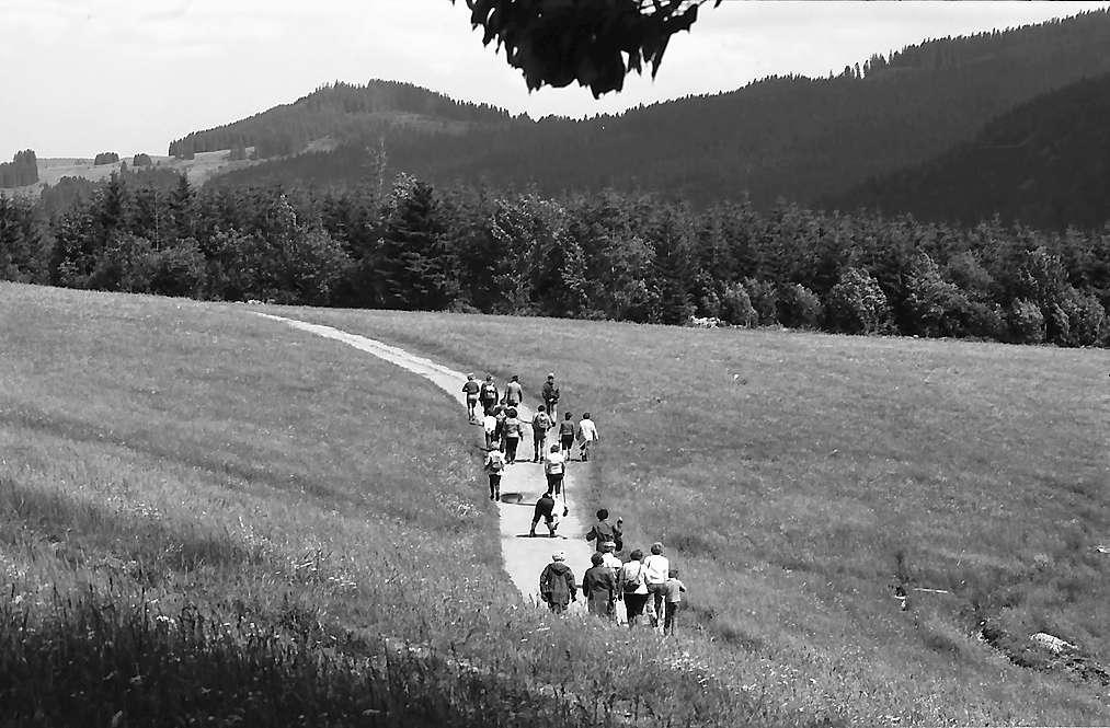 Wandergruppen im Bärental, Bild 1
