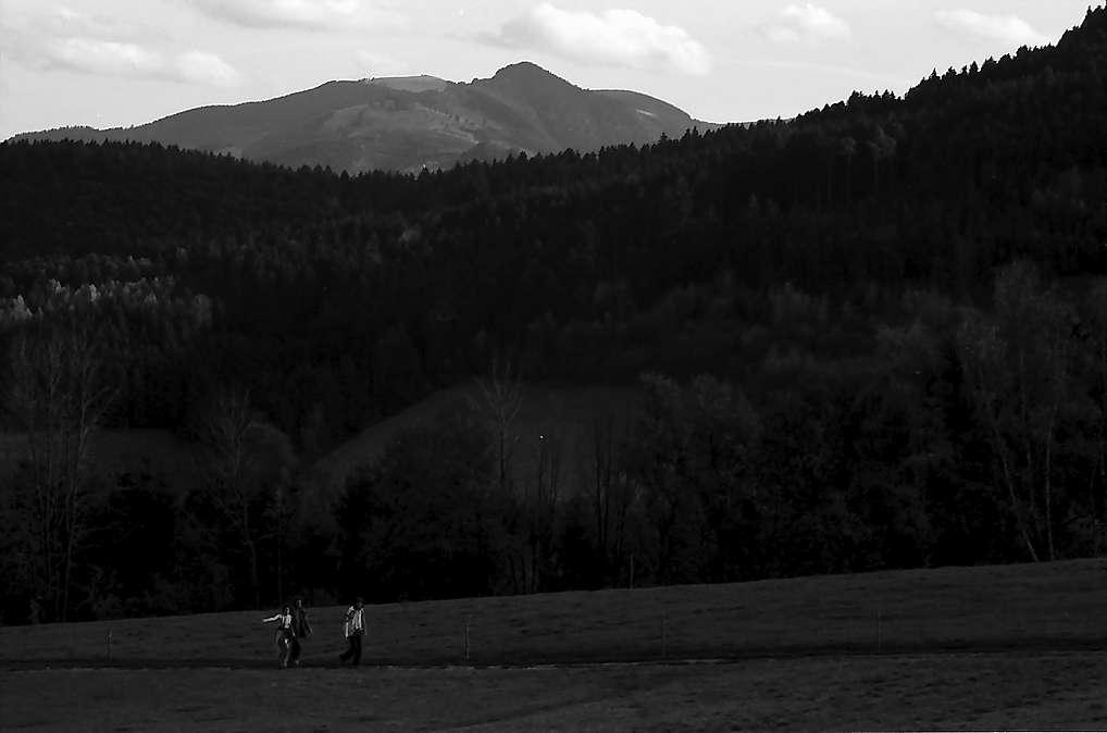 Blick auf Kappel-Großtal mit Hinterwaldkopf, Bild 1