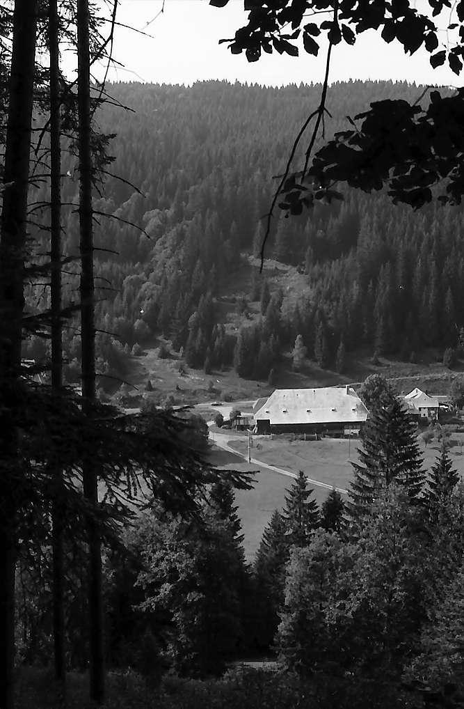 Blick vom Höhenweg Titisee-Feldberg in das Bärental mit Löffelschmiede, Bild 1
