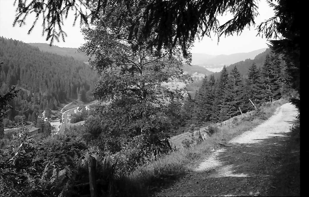 Blick vom Höhenweg Titisee-Feldberg in das Bärental und auf den Titisee, Bild 1