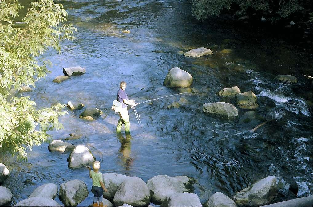 Angler in der Wutachschlucht bei Dietfurt, Bild 1