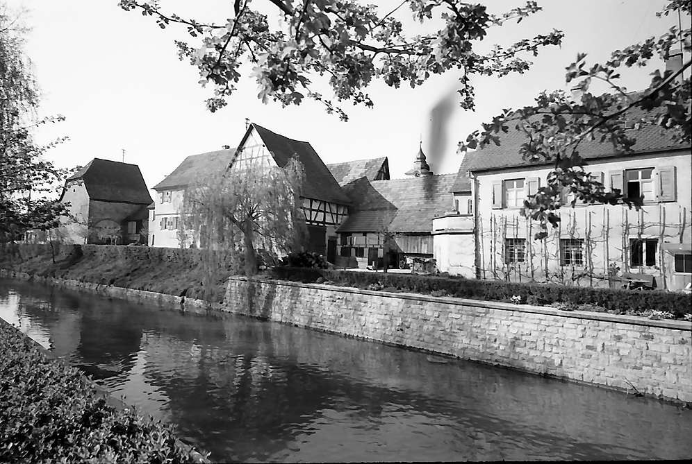Sinsheim: Partie an der Elsenz, Bild 1