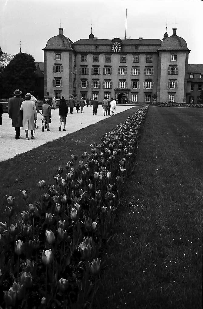 Schwetzingen: Blumeneinfassungen am Weg zu Schloss, Bild 1