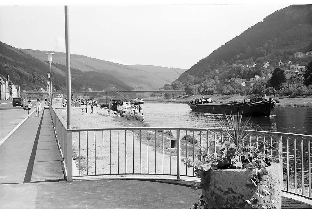 Eberbach: Neckarpromenade und Uferstraße, Bild 1