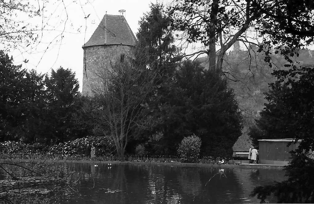 Weinheim: Teich mit altem Turm, Bild 1