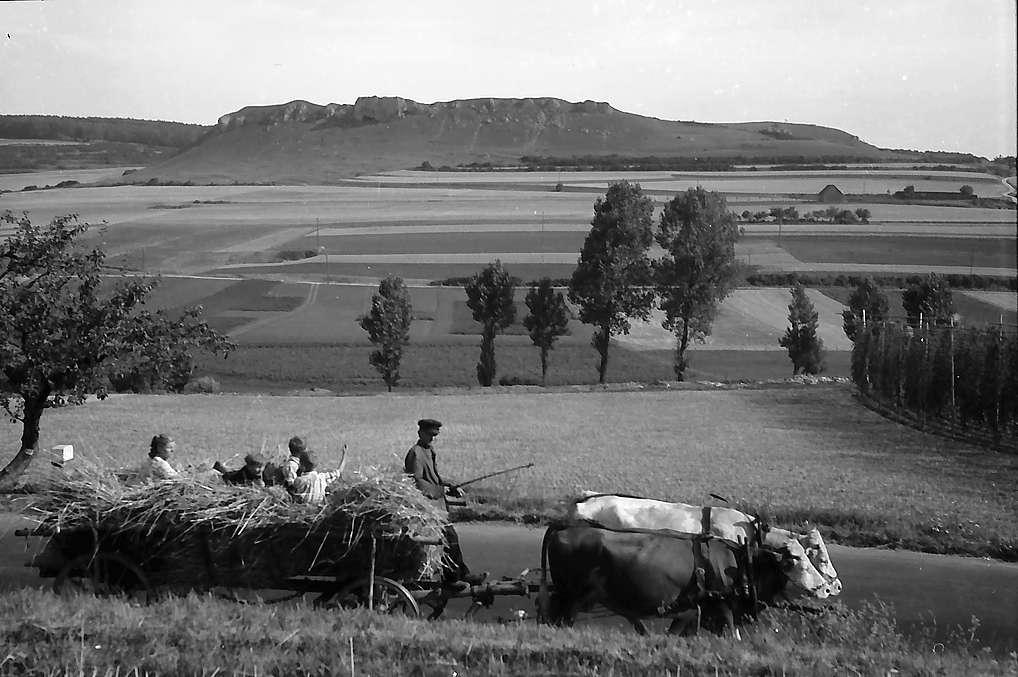 Bopfingen: Landschaft des Ries, Bild 1