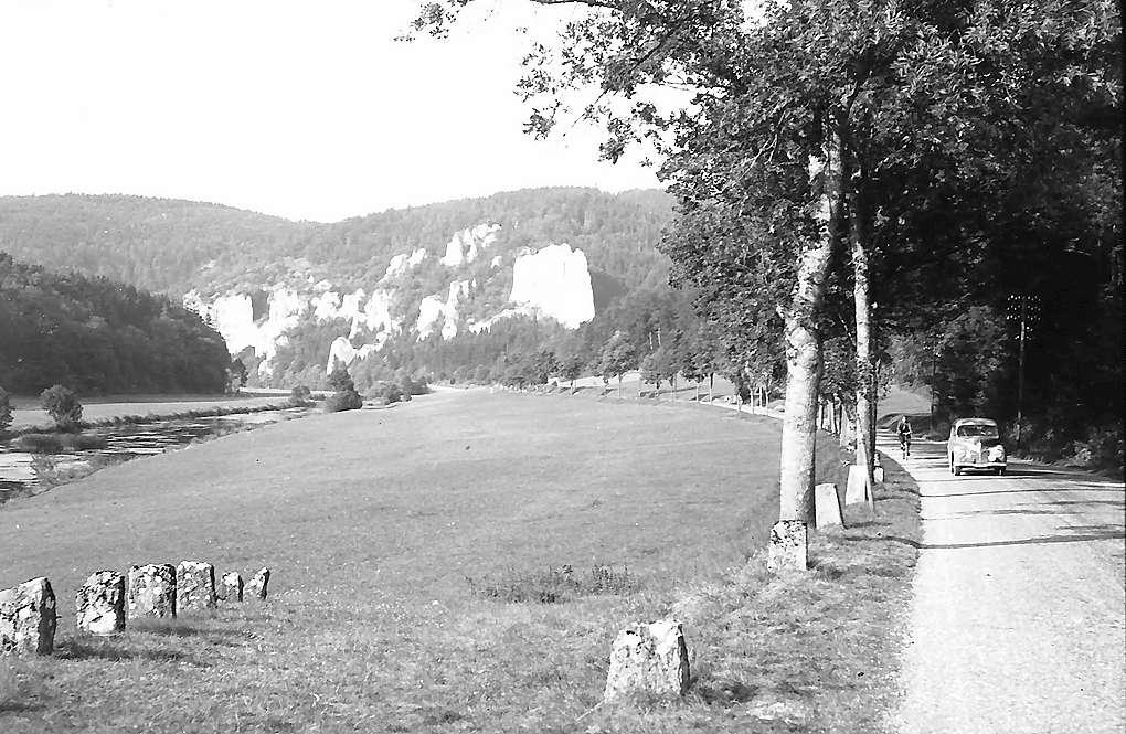 Laiz: Donautal, Bild 1