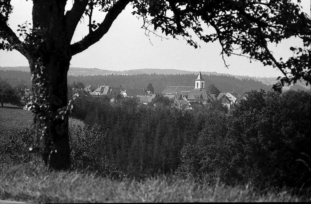 Mainhardt: Blick von der B 14 auf den Ort, Bild 1