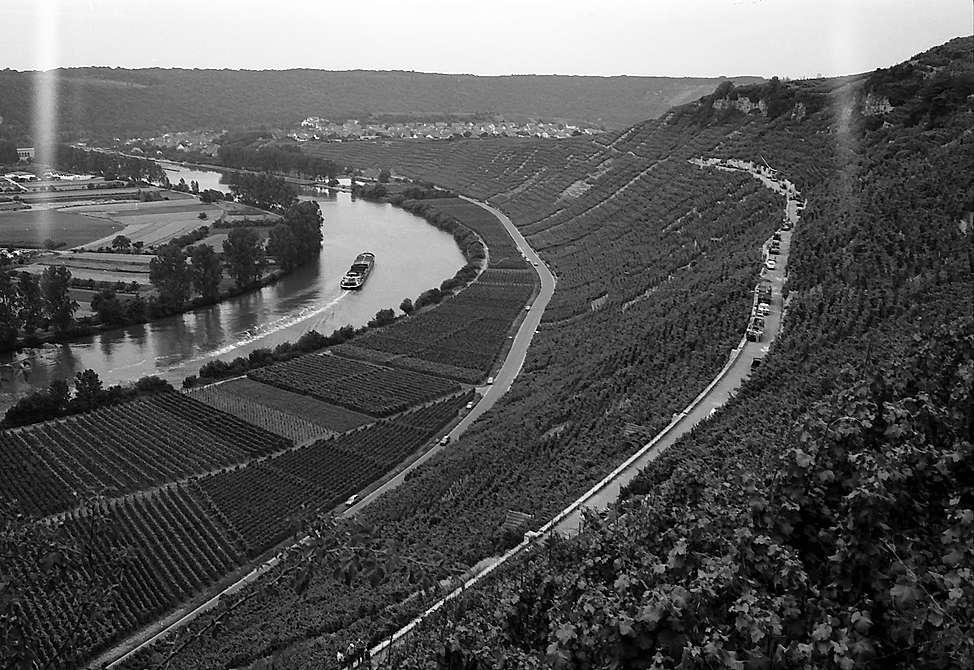Hessigheim: Weinberghänge am Neckarbogen, Bild 1