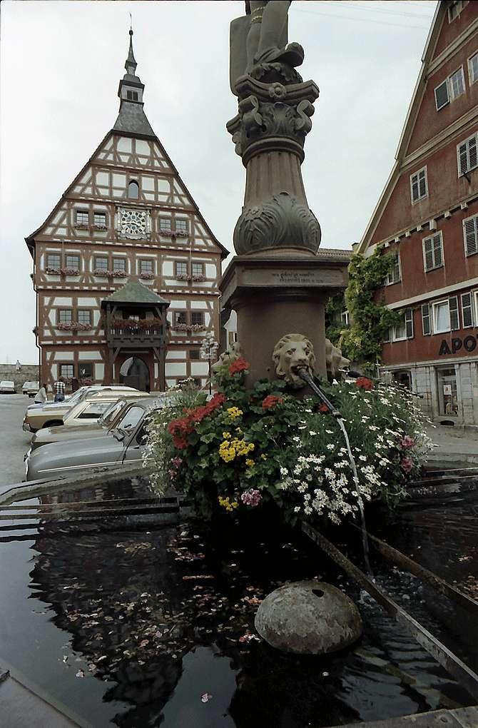 Besigheim: Rathaus mit Brunnen im Vordergrund, Bild 1