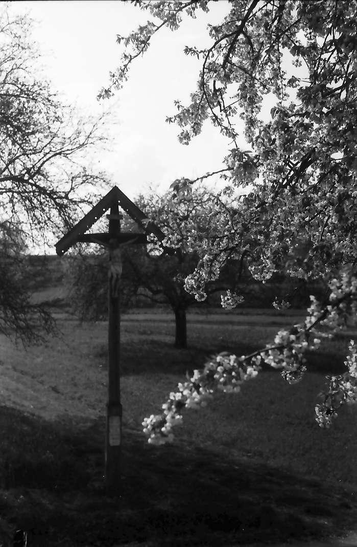 Vogtsburg: Kruzifix hinter Blütenästen, Bild 1