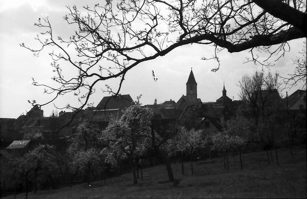 Burkheim: Blick auf Burkheim, Bild 1