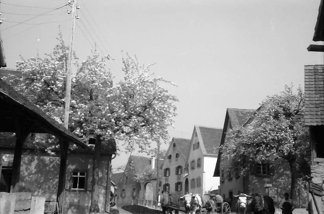 Opfingen am Tuniberg: Dorfstraße, Bild 1
