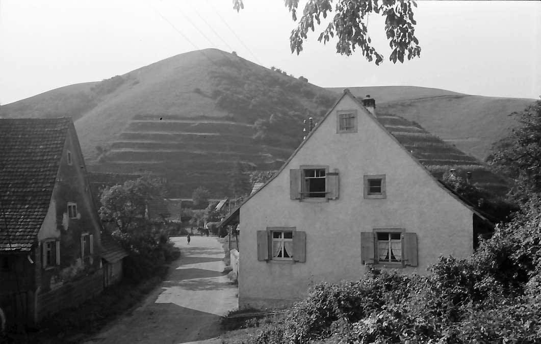 Vogtsburg: Badberg bei Vogtsburg, Bild 1