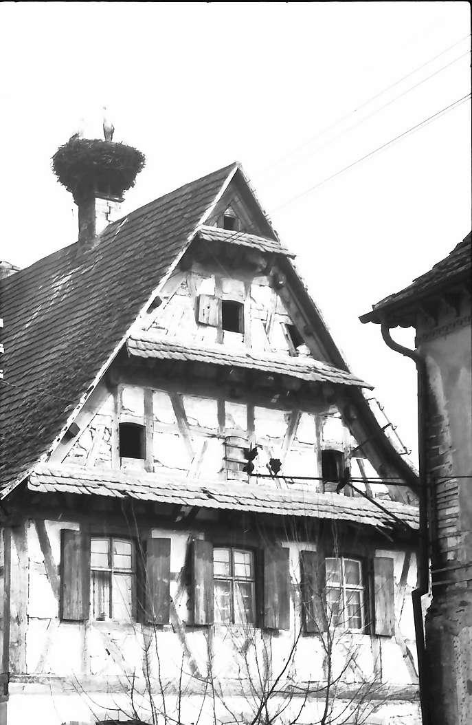 Bahlingen: Altes Haus mit Storchennest, Bild 1