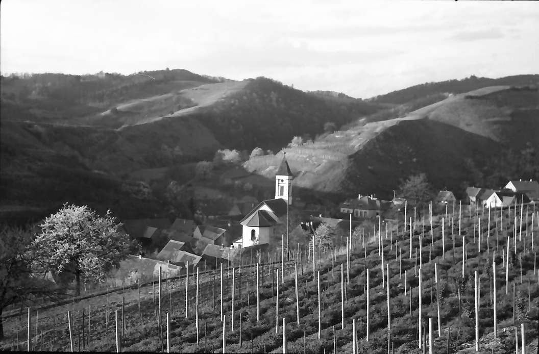 Schelingen: Dorf zwischen den Bergen, von oben, Bild 1